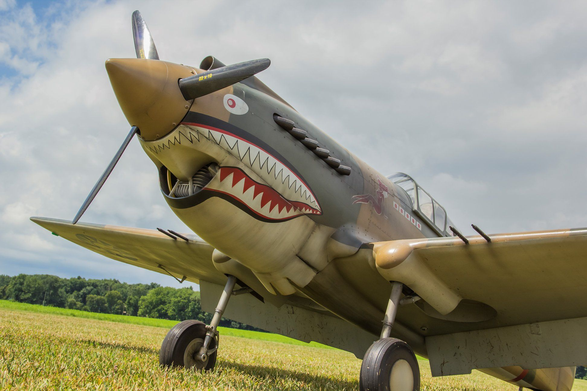 "Curtiss P-40 ""Warhawk"" (1/5.5 Scale) - Parts Set"