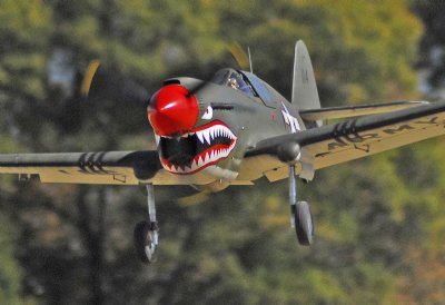 P-40 Warhawk - Parts Set - Ziroli