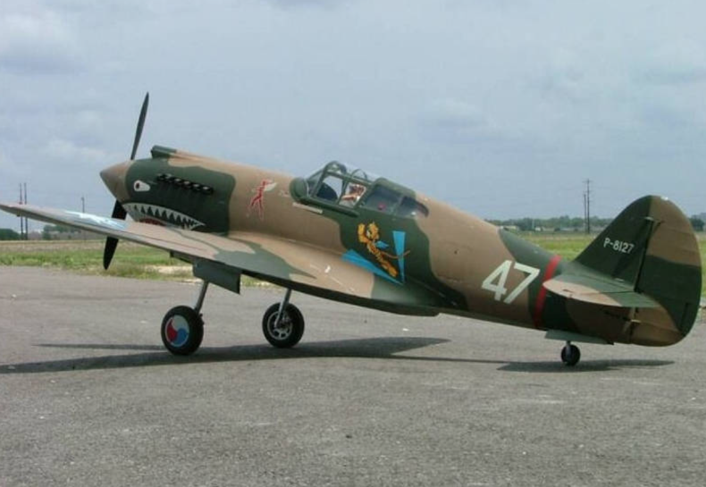Curtiss P-40 Warhawk – 1/3.5 scale by Jerry Bates